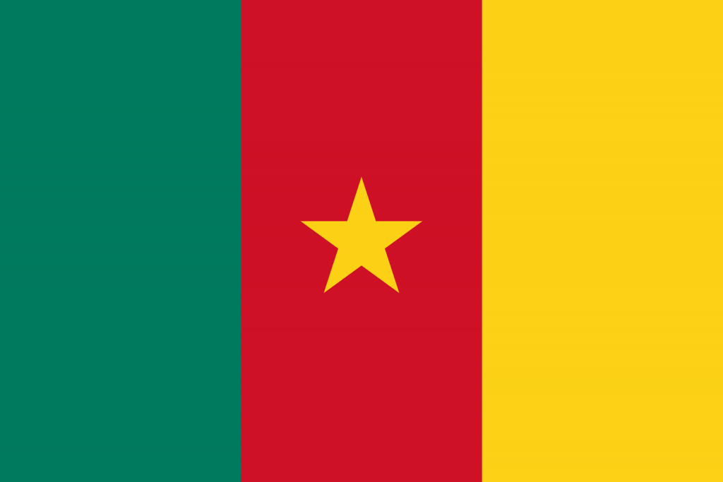 Illustration of Cameroon flag