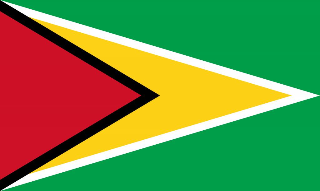 Illustration of Guyana flag